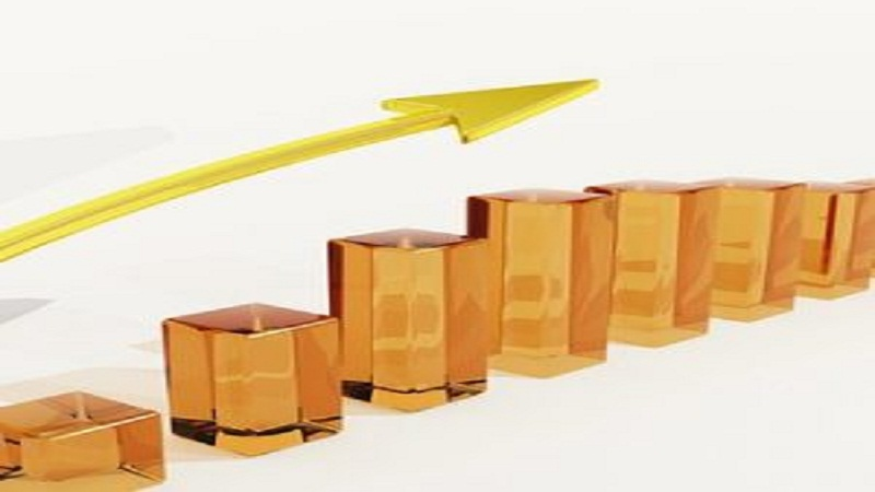 Risk Management Assessment Questions